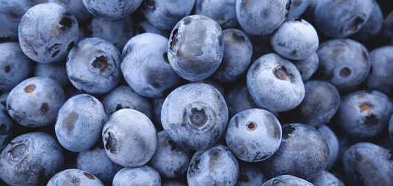 Southern Produce blueberries
